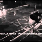 CCTV Shocking Near Miss on Train Track