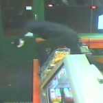 Subway sandwich shop robbery