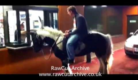 OMG Horse Drive Thru !!!!