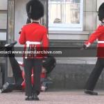 Buckingham Palace Guard Falls Over /15H-PD101-039