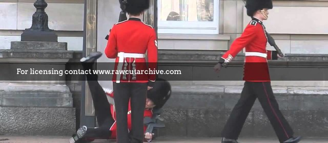 Buckingham Palace Guard Falls Over /15H-PD101-039